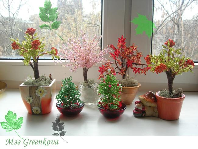 деревья рябина схема