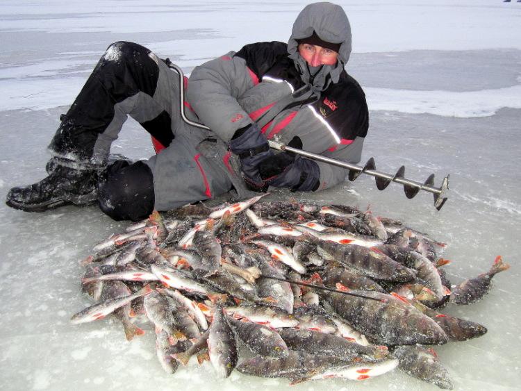 сайты о рыбалке на ладоге